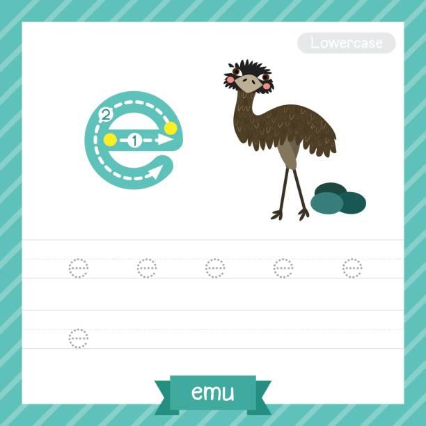illustrations, cliparts, dessins animés et icônes de lettre d'une feuille de calcul suivi animaux minuscules alpaga - enseignant(e) en maternelle