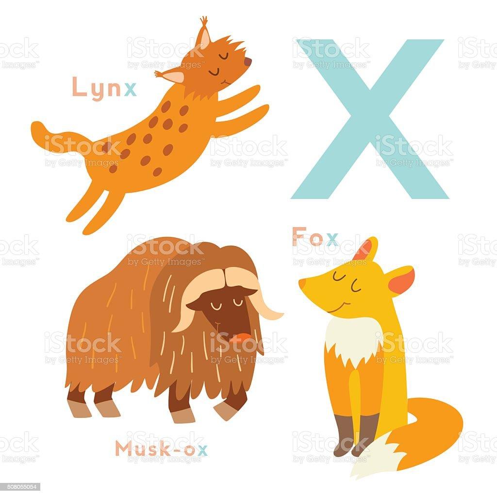 Bien-aimé X Letter Animals Set English Alphabet Vector Illustration stock  MD96