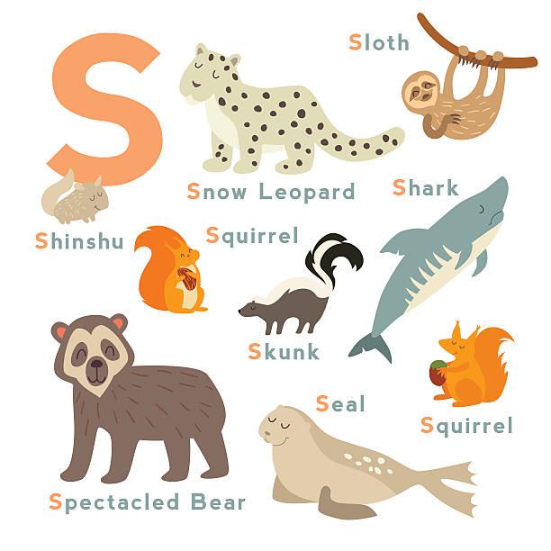 S letter animals set. English alphabet. Vector illustration S letter animals set. English alphabet. Vector illustration, isolated on white background skunk stock illustrations