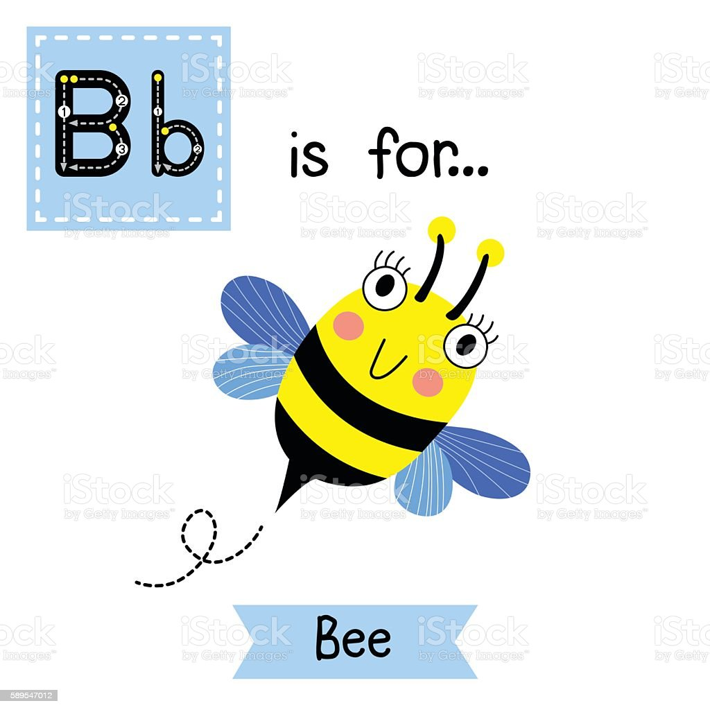 letter b tracing happy bee flying royalty free stock vector art
