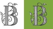 Letter B,Typo, Alphabet, Enluminure, Ornement,  Manuscrite, Rétro, Floral