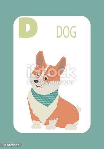 istock Letter D, Dog, educational, learning the alphabet cards for kids. 1313255871