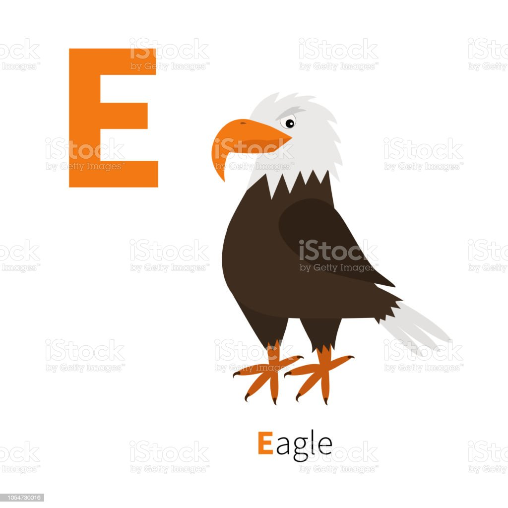 Letter E. Eagle. Big beak. Beautiful Exotic bird icon. Baby animal...