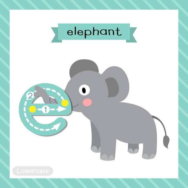 illustrations, cliparts, dessins animés et icônes de traçage en minuscules de lettre e. elephant debout - enseignant(e) en maternelle