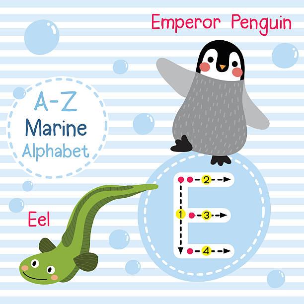 illustrations, cliparts, dessins animés et icônes de letter e tracing. emperor penguin. eel. marine alphabet. - enseignant(e) en maternelle