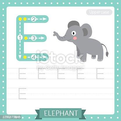 Letter E uppercase tracing practice worksheet. Standing Elephant