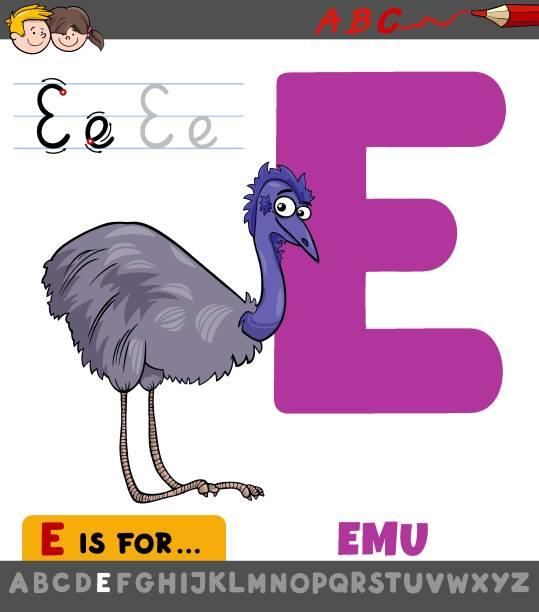 illustrations, cliparts, dessins animés et icônes de lettre e feuille de calcul avec dessin animé emu oiseau - enseignant(e) en maternelle