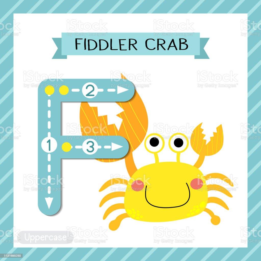 Letter F Uppercase Tracing Fiddler Crab Stock Illustration