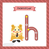 Letter H lowercase cute children colorful zoo and animals ABC alphabet tracing flashcard of Hamster eating sunflower seeds for kids learning English vocabulary and handwriting vector illustration.