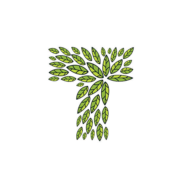 t letter icon formed by vintage pattern line green leaves vector art illustration