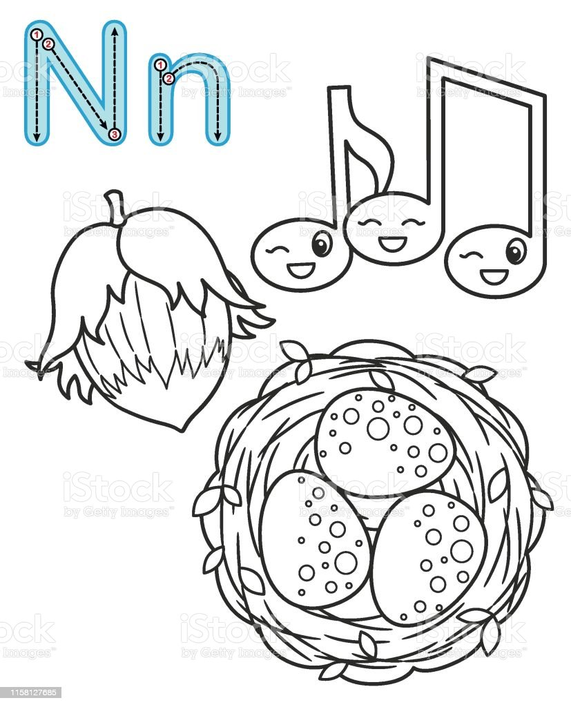 Letter N Nuts Notes Nest Vector Coloring Book Alphabet Printable Coloring  Page For Kindergarten And Preschool Stock Illustration - Download Image Now  - IStock
