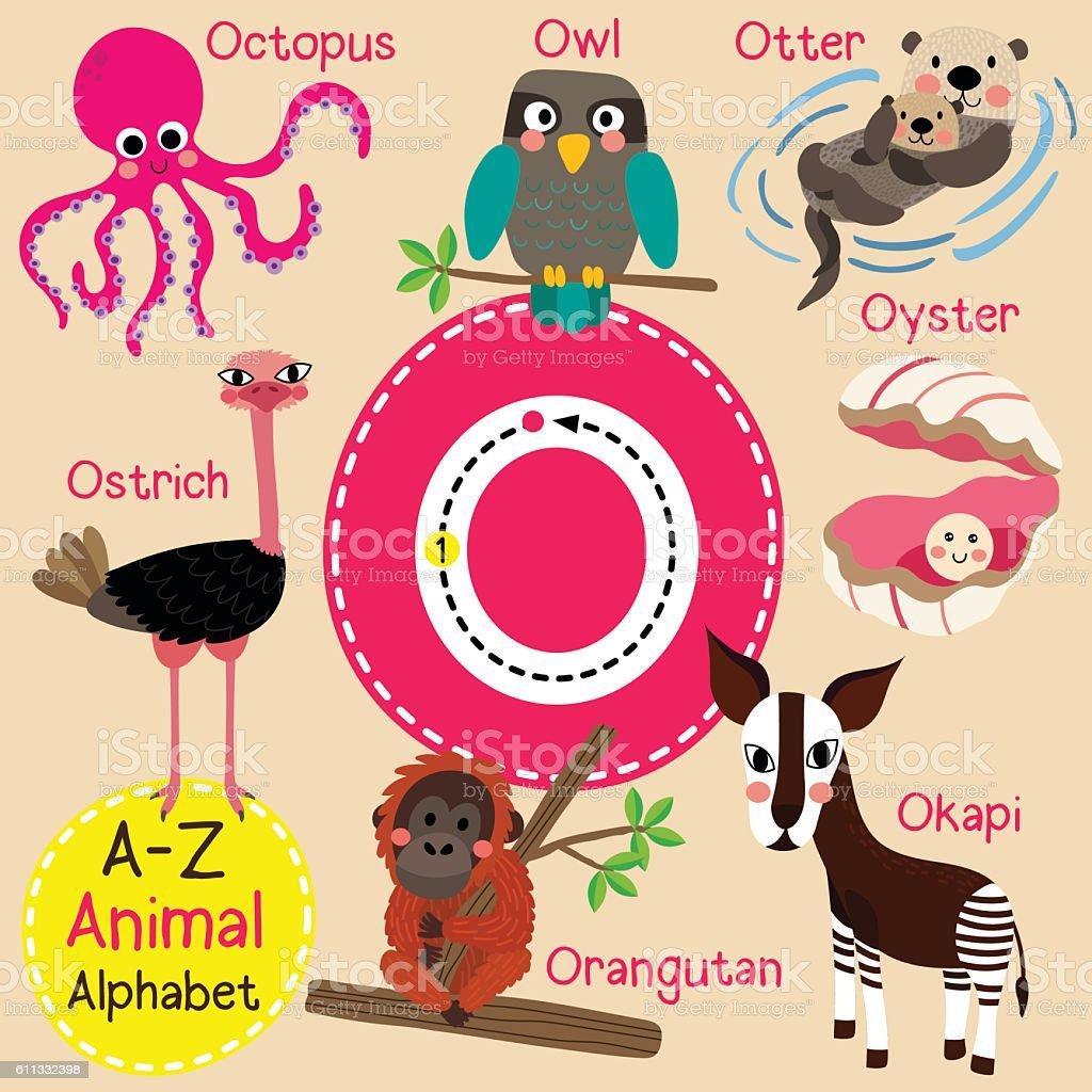 Letter O tracing. Octopus. Orangutan. Otter. Owl. Oyster. Ostrich. Okapi. - Illustration vectorielle