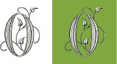 Letter O, Typo, Alphabet, Enluminure, Ornement,  Manuscrite, monogram,Rétro, Floral