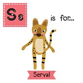 Letter S tracing. Serval Cat.