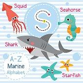 S letter tracing. Shark. Squid. Starfish. Seahorse. Cute children sea marine alphabet flash card. Funny cartoon animal. Kids abc education. Learning English vocabulary. Vector illustration.
