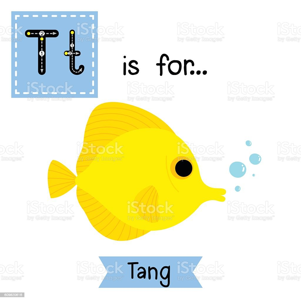 Letter T Tracing Yellow Tang Fish Stock Vector Art & More Images of ...