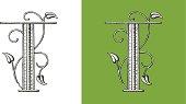 Letter T,Typo, Alphabet, Enluminure, Ornement,  Manuscrite,monogram, Rétro, Floral