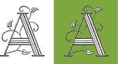 A, Letter, Typo, Alphabet, Enluminure, Ornement,  Manuscrite,monogram Rétro, Floral