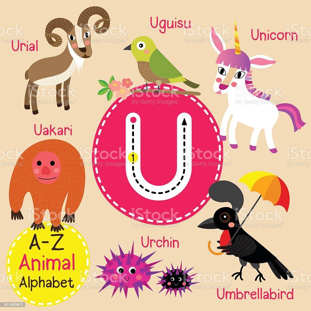 Letter U Tracing Unicorn Umbrellabird Urchin Uguisu Uakari Urial ...