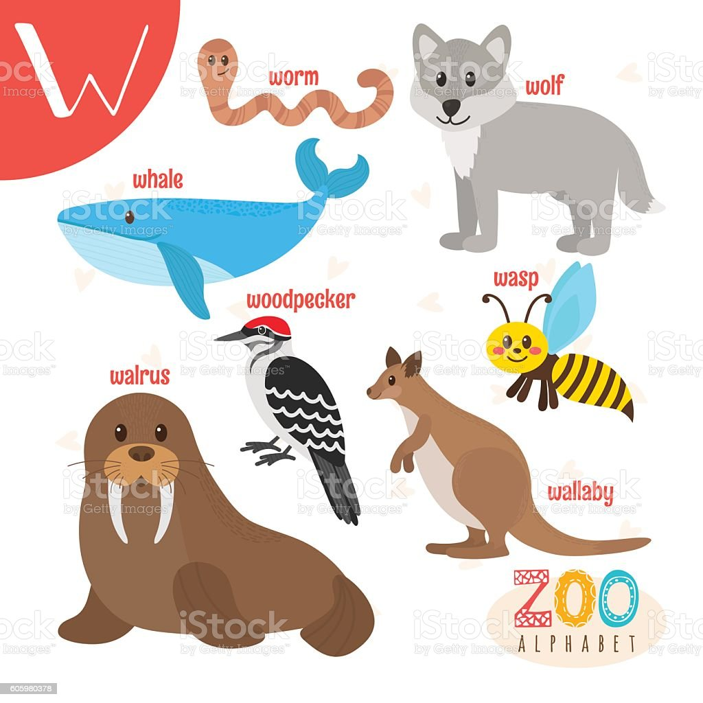 Letter W Cute Animals Funny Cartoon Animals In Vector Stock Vector