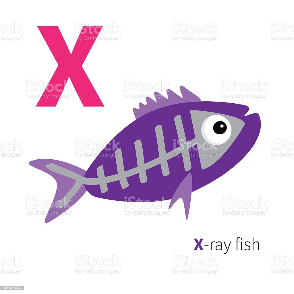 Litera X Badanie Ryb Zoo Alfabetu Polski Abc Płaska Konstrukcja
