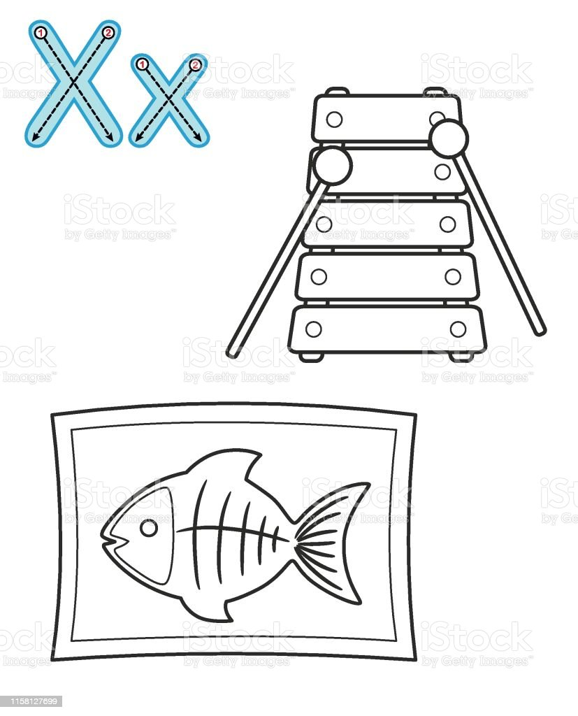 graphic relating to Letter X Printable called Letter X Xylophone Xray Vector Coloring Reserve Alphabet