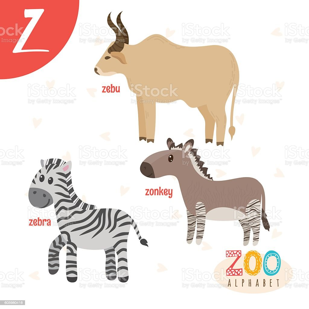 3 letter animals letter z animals animals in vector 25786