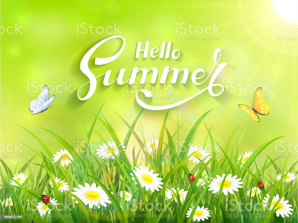 Lettering Hello Summer On Green Nature Background Stock
