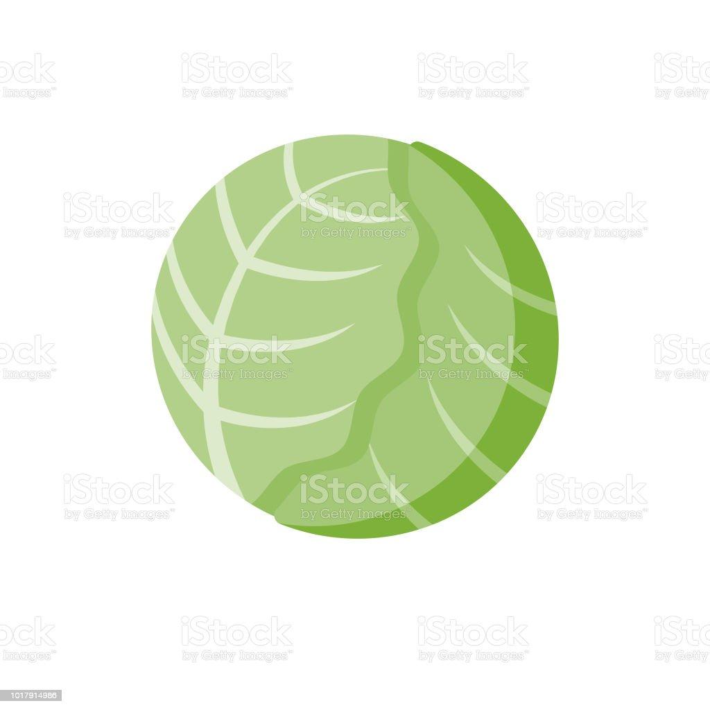 Lettuce Flat Design Vegetable Icon vector art illustration