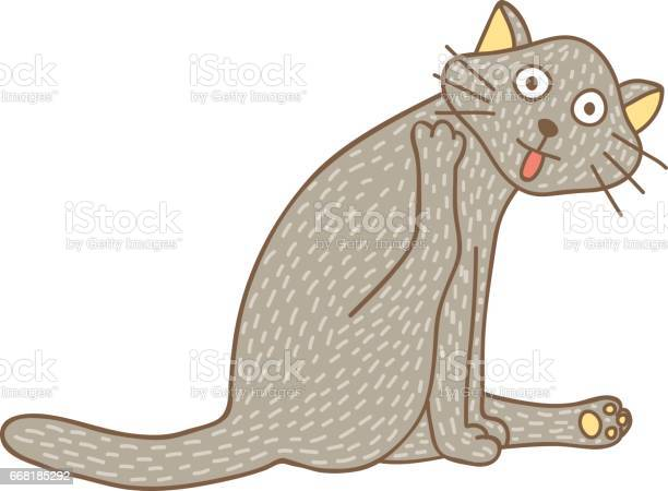 Licking cat vector id668185292?b=1&k=6&m=668185292&s=612x612&h=oydb km3ceyqnhomiegxg6jgdpvhl4zhxxb4bniweim=