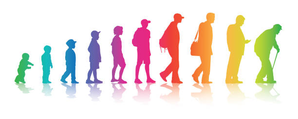 Life Changes Your Colors Aging process in humans from baby to old age in rainbow colours baby human age stock illustrations