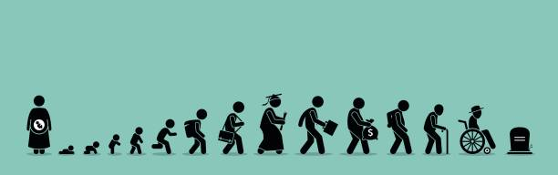 Life cycle and aging process. Person growing up from baby to old age. baby human age stock illustrations