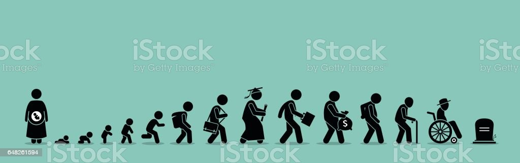Life cycle and aging process. vector art illustration