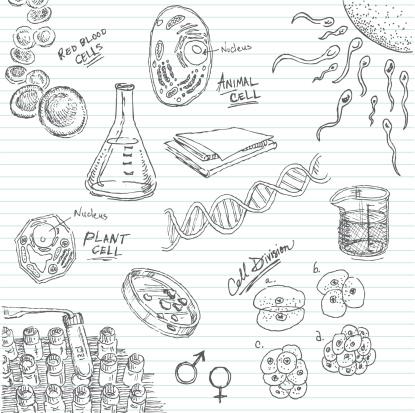 Life in a Petri Dish Doodle