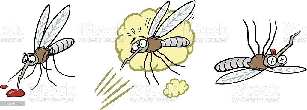 Life Of A Mosquito vector art illustration
