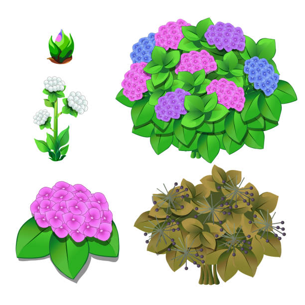 Royalty Free Wilted Flower Clip Art, Vector Images ...