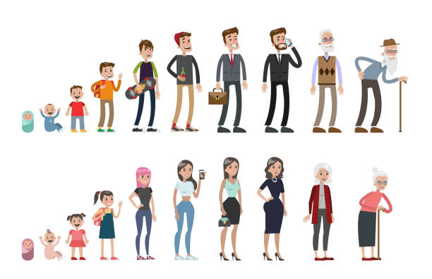 Life stages set. Life stages set. Man and woman. From baby to old. baby human age stock illustrations