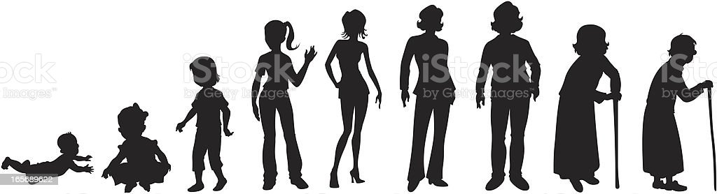 Lifecycle of a woman vector art illustration