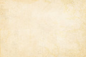 Light colored beige Vintage Paper. Beige background vector