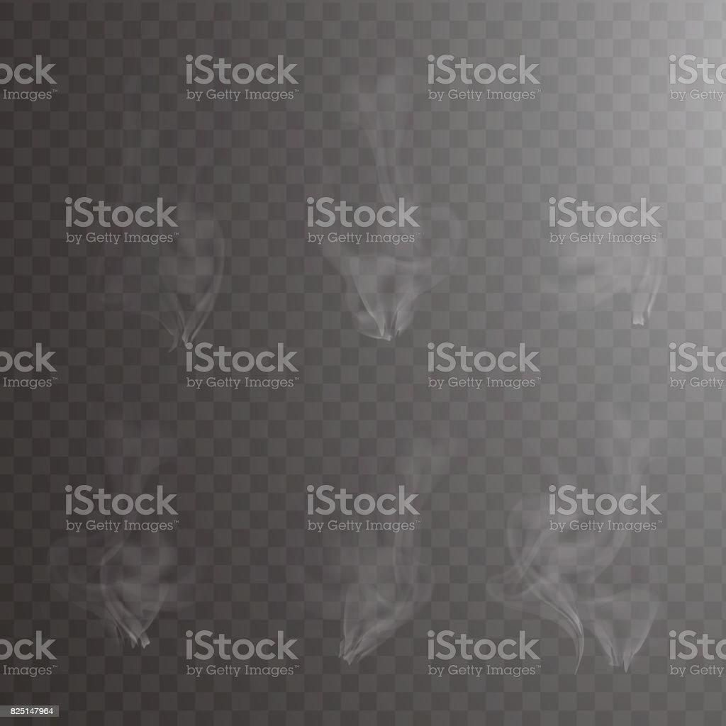 Işık gri sigara dumanı dalgalar üzerinde şeffaf. Sıcak kahve fincan koyu arka plan vektör çizim üzerinde üzerinde beyaz buhar. Sis etkisi kümesi. Su damla, toz ve nokta bulut, atomizer sis. vektör sanat illüstrasyonu