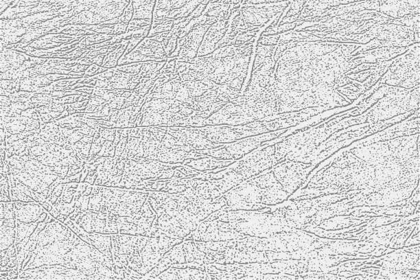 Light gray skin texture, genuine or faux white leather background, closeup. vector art illustration