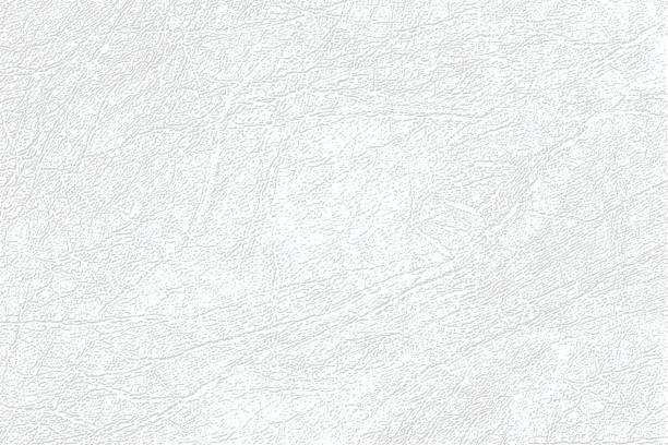 ilustrações de stock, clip art, desenhos animados e ícones de light gray skin texture, genuine or faux white leather background, closeup. - couro
