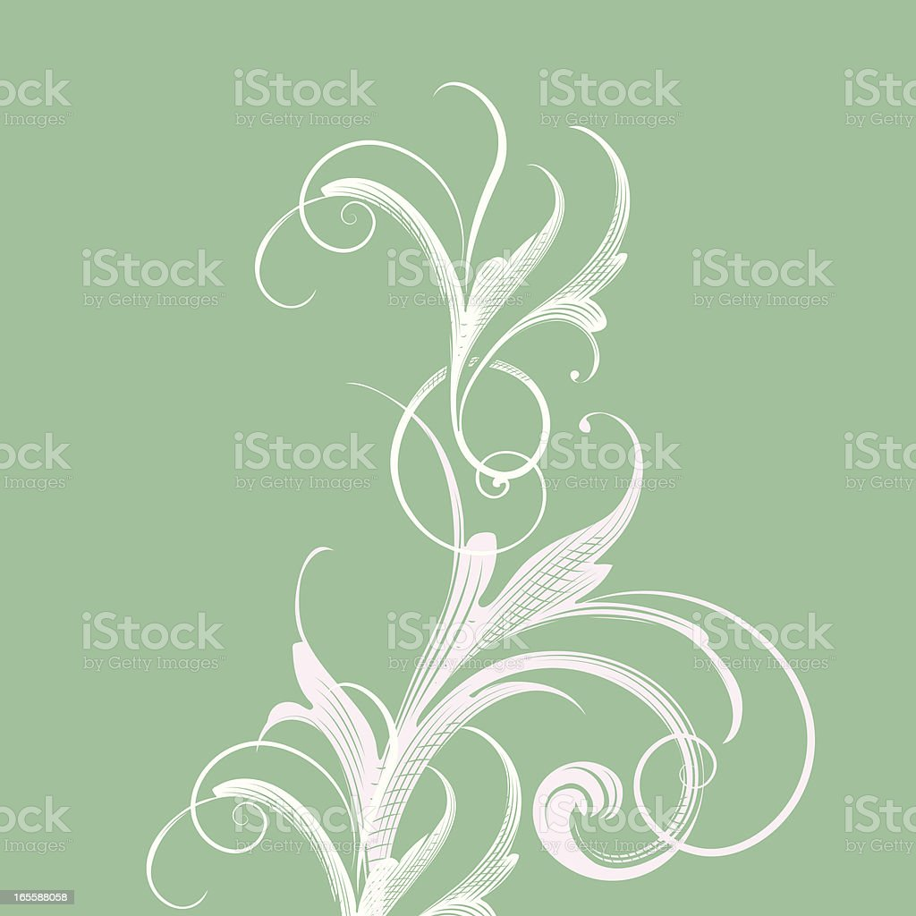 Light Green Scroll Background royalty-free stock vector art
