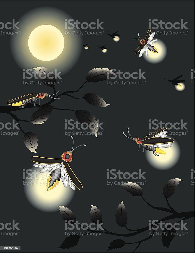 Lightning Bugs / Fireflies in Moonlight vector art illustration