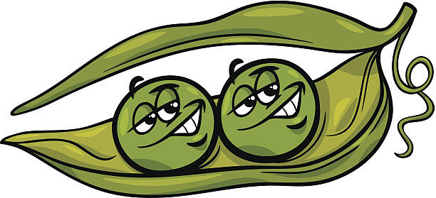 like two peas in a pod cartoon - like two peas in a pod stock illustrations, clip art, cartoons, & icons