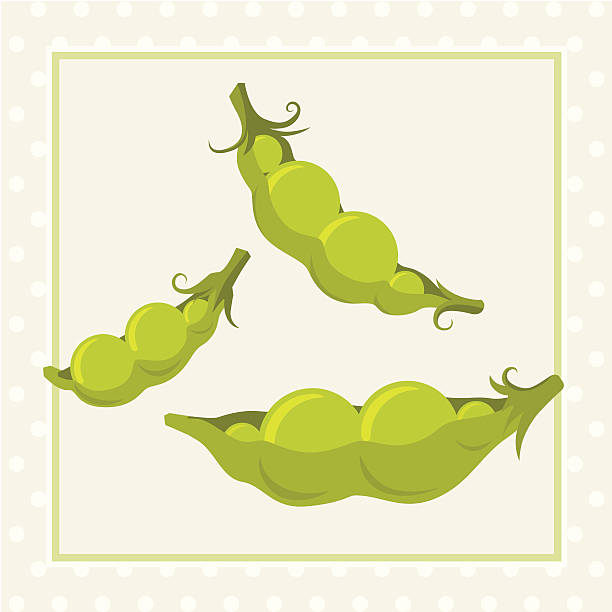 like two peas in a pod - like two peas in a pod stock illustrations, clip art, cartoons, & icons