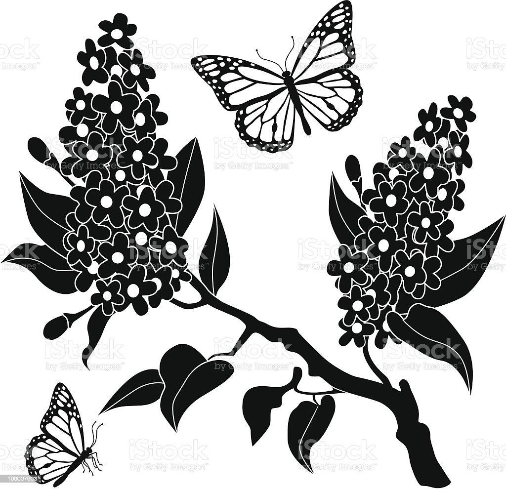 lilacs and monarch butterflies stock vector art 166007603 istock