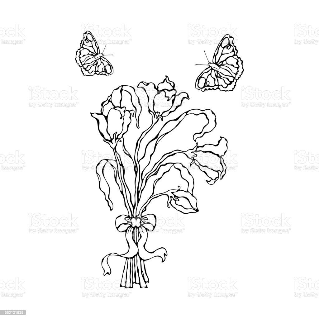 Lilyum Buketi Kelebekler Vektör çizim Ve Bir Yayla Sayfa Boyama Stok