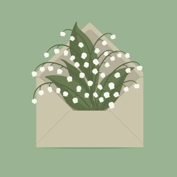 Lilies of the valley in the mail envelope Lilies of the valley in the mail envelope. Spring flowers. Floral composition. Vector illustration on a green background lily of the valley stock illustrations