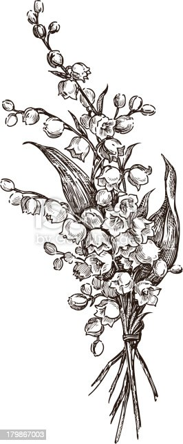 Vector drawing of a bouquet of lilies of the valley.